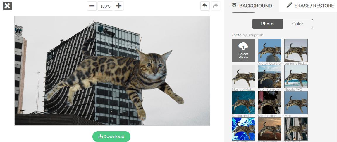 AI去背網站remove.bg幫孟加拉貓去背並套入背景