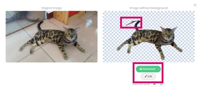 AI去背網站remove.bg幫孟加拉貓去背的實例