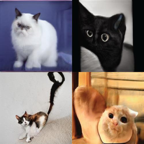 NVIDIA的AI創造的貓咪-1 達內教育