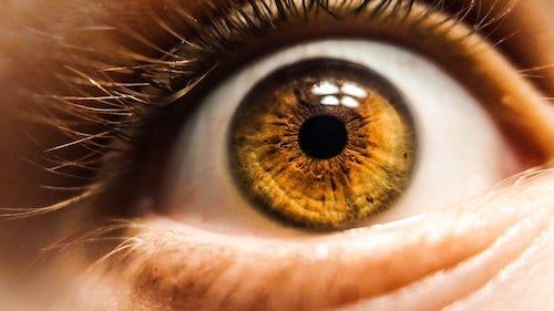 AI 幫助降低失明示意圖