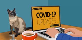 covid-19用電腦看疫情更新示意圖