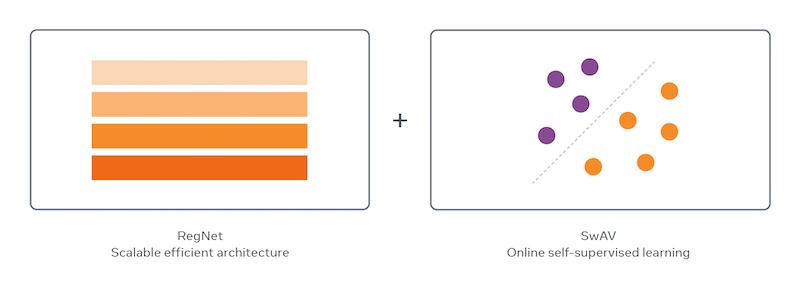 「RegNet」模型與與在線自監督學習演算法「SwAV」的圖片