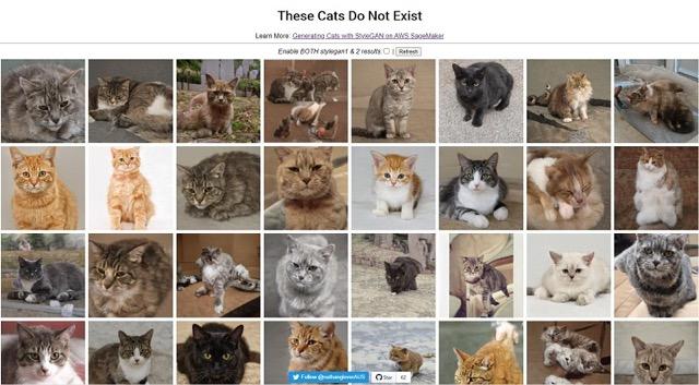 AWS上經由StyleGEN生成的虛擬貓